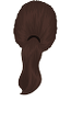 Brown-Ponytail