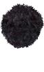 Black Curl