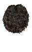 Brown Curl