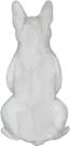 French Bulldog light grey