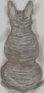French Bulldog dark grey stripes