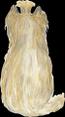 Yorkshir blond
