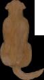 Retrirver dark brown