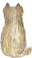 Yorkshir blond no hairstyle